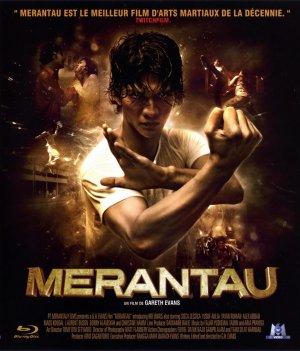Merantau   Movie Reviews